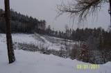 Lesní_školka